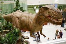 T-Rex goes shopping_resized